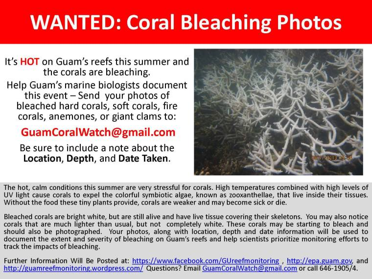 WANTED poster shared with Guam's community to help document coral bleaching