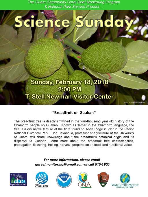 Science Sunday_February 18