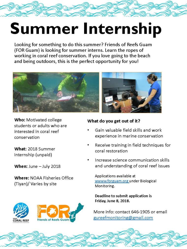 2018 summer internship flyer